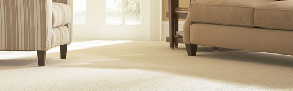 Carpet Steam Cleaning Templestowe